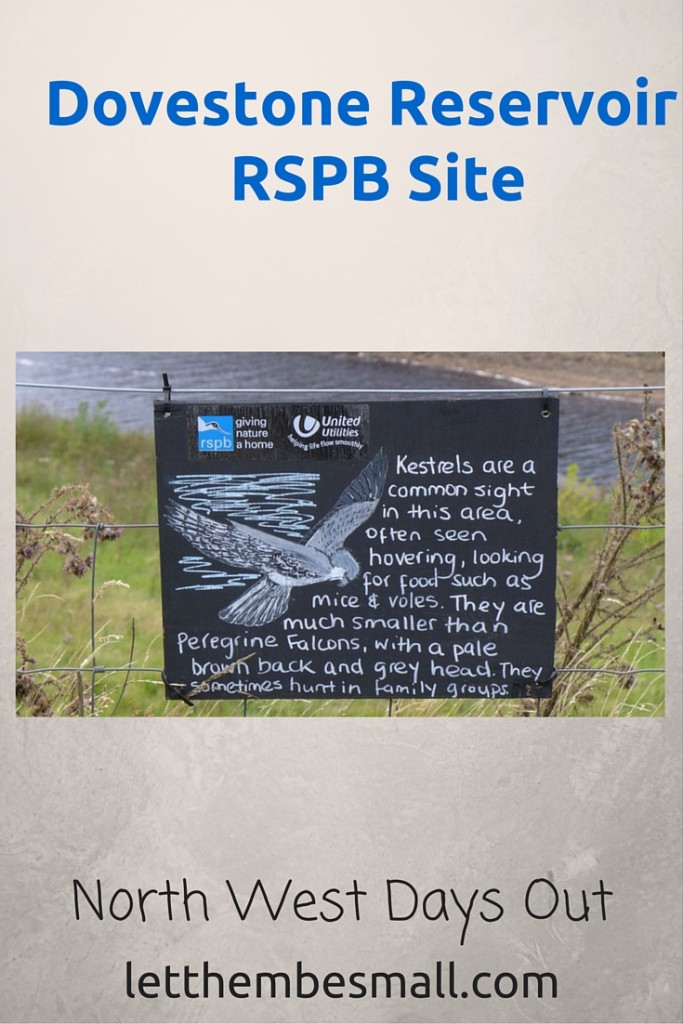 Dovestone Reservoir is an RSPB site and is a wonderful place for a family walk. There are lots of opportunities to spot birds etc