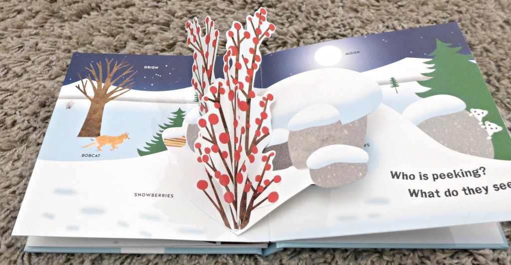 Winter pop up book David Carter