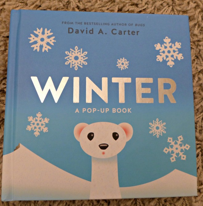 Winter pop up book David Carter