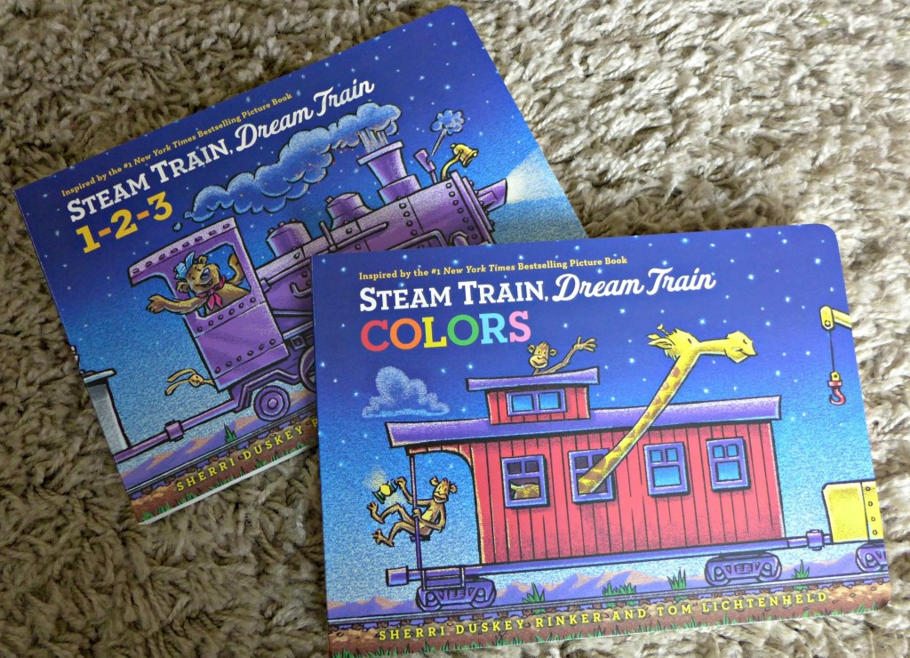 steam train dream train review