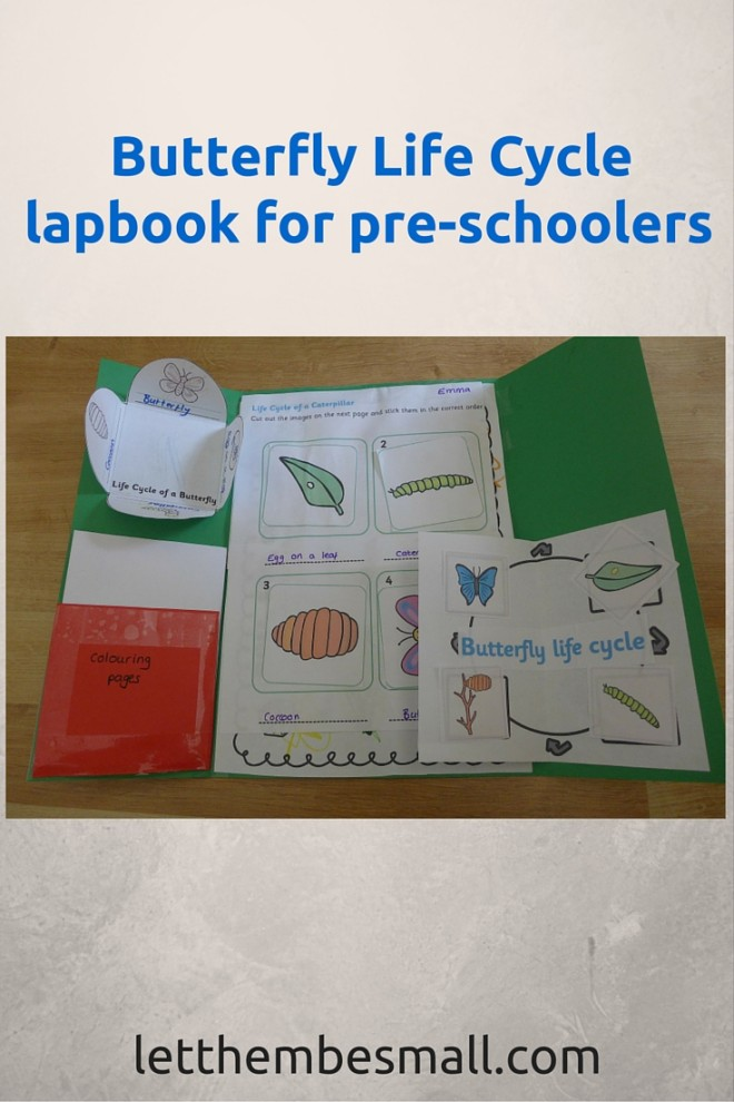 Butterfly Life Cycle lapbook - includes link to printables. good idea for early years and pre schoolers