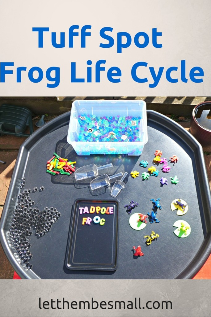 Frog Life Cycle Tuff Spot on Pre Plant Life Cycle