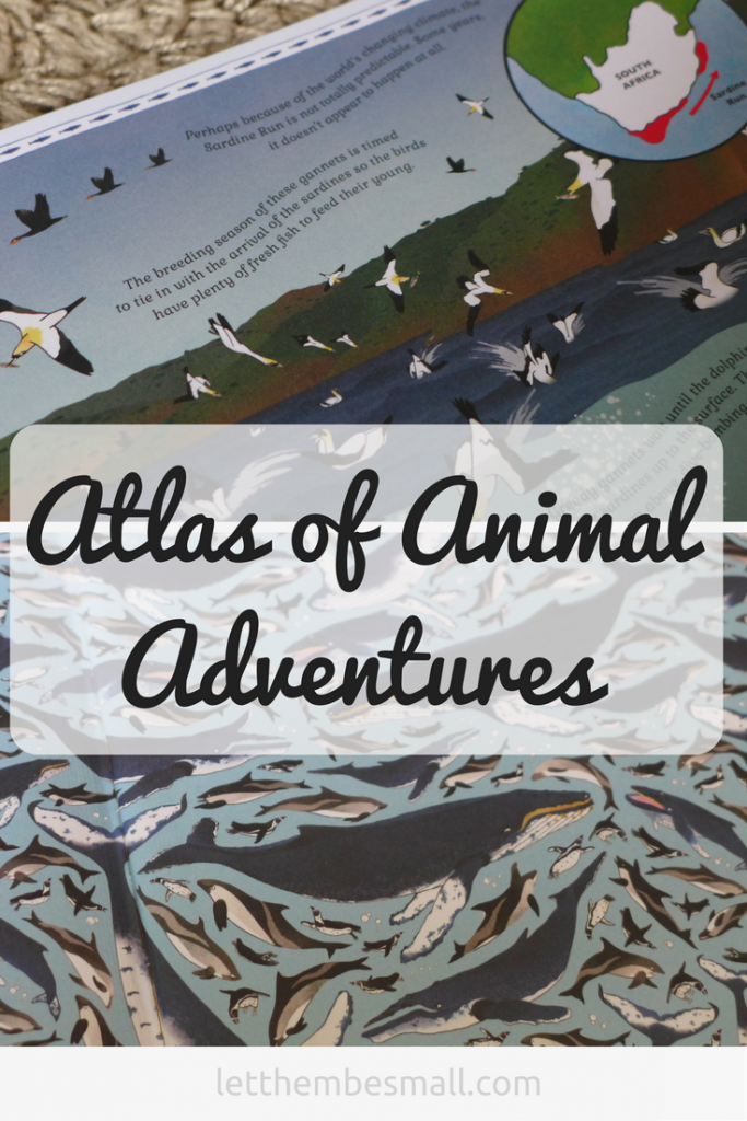 Atlas of animal adventures is the perfect book to discover the wonder of the natural world