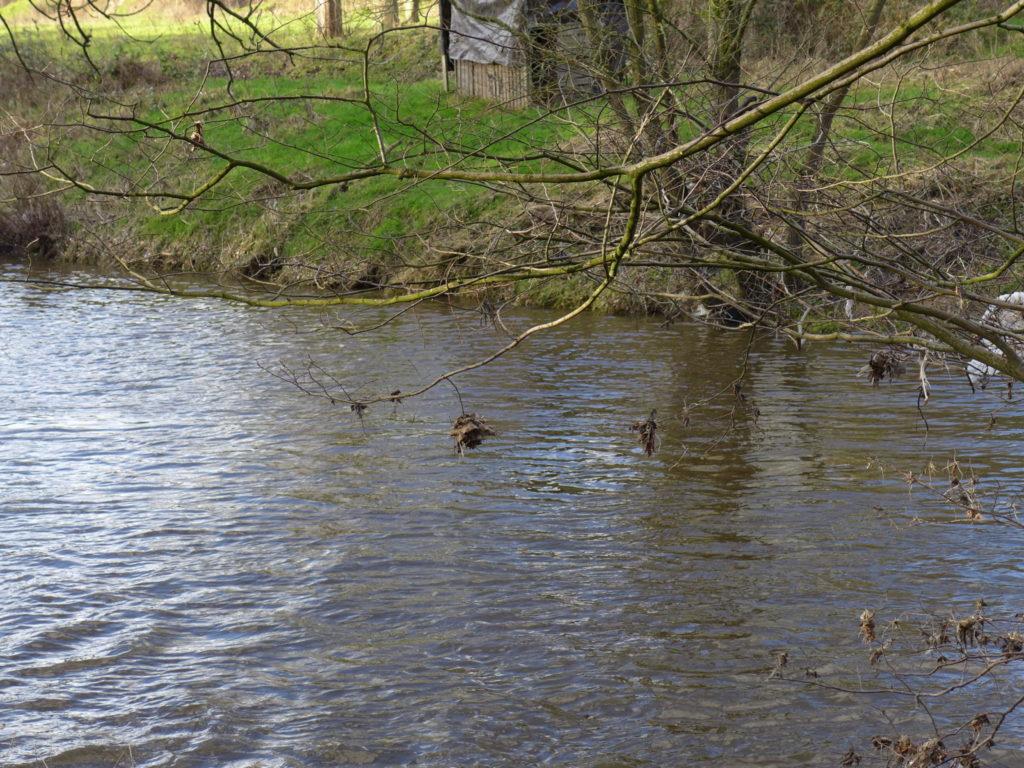 river goyt walk