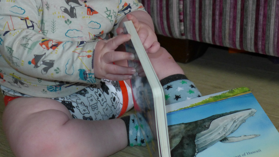7 Brilliant Books for Babies