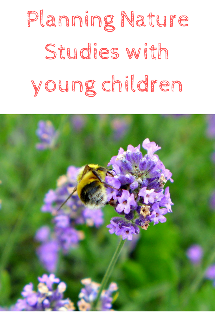planning nature studies with children - here are our thoughts and our supplies
