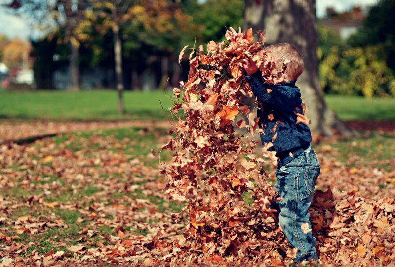 fun outdoor autumn games